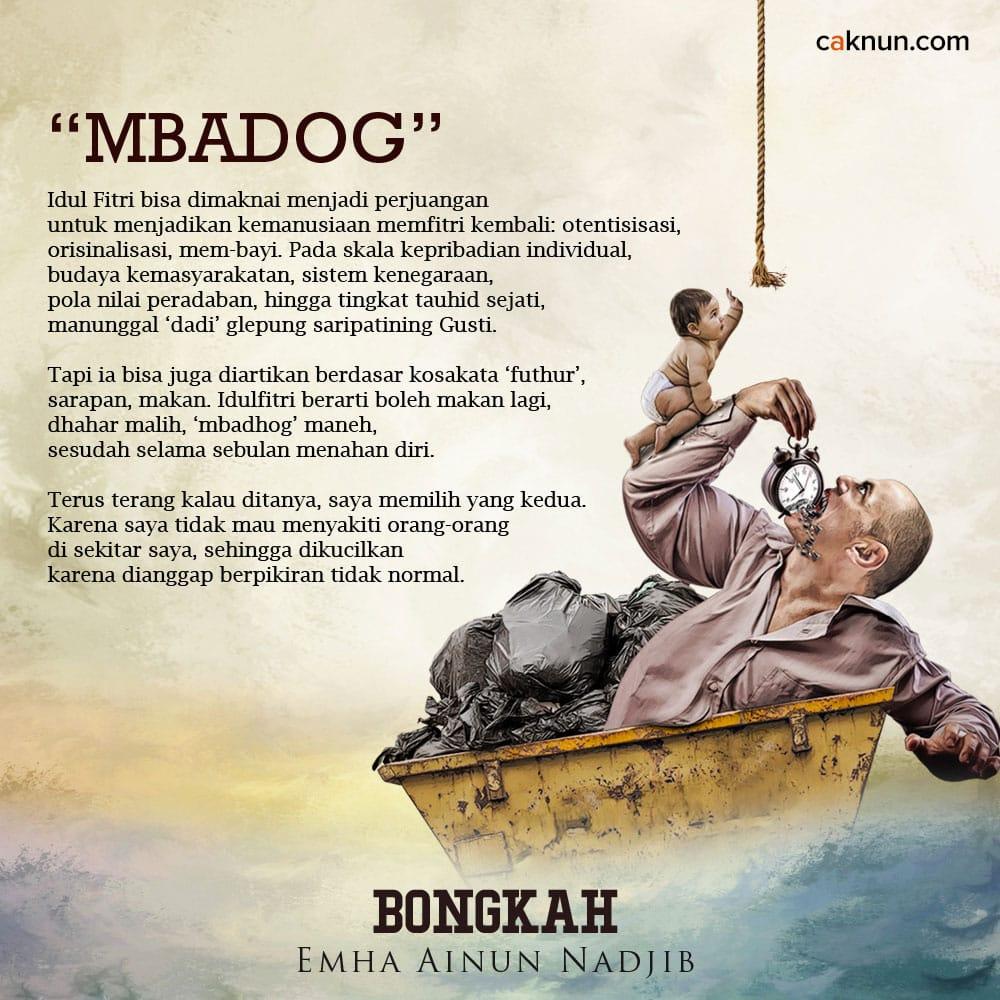 """""""Mbadog"""""""
