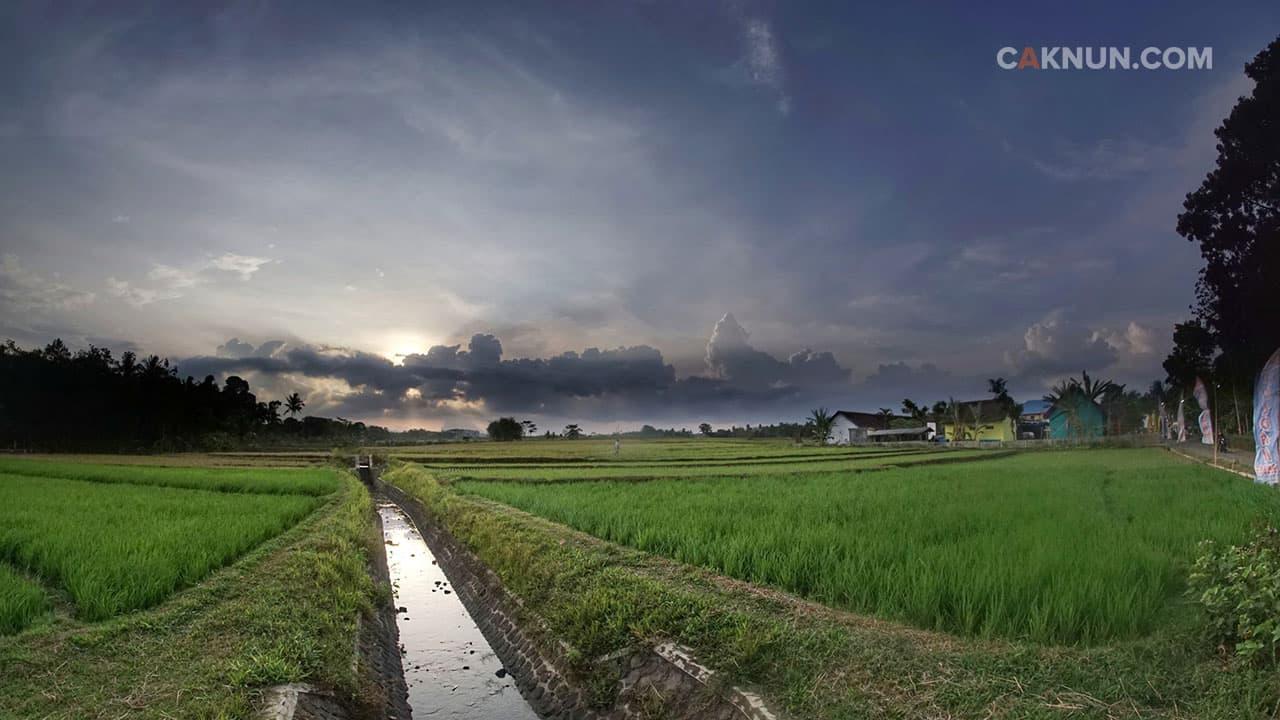 Lokasi Sinau Bareng Desa Purworejo