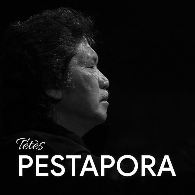 Pestapora